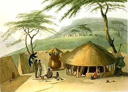 Leguaan-African-Watch-Hut-Wildmoz.com
