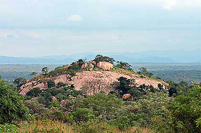 San-Bushman-Art-Kruger-Park-Wildmoz.com