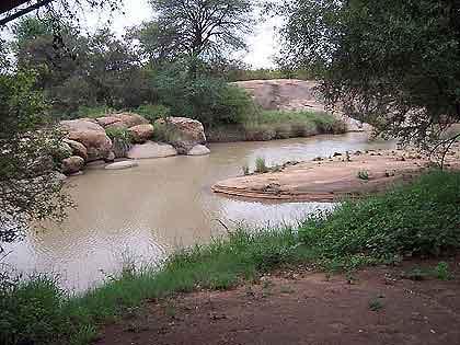 Marog-bushveld-River-Banks-Wildmoz.com