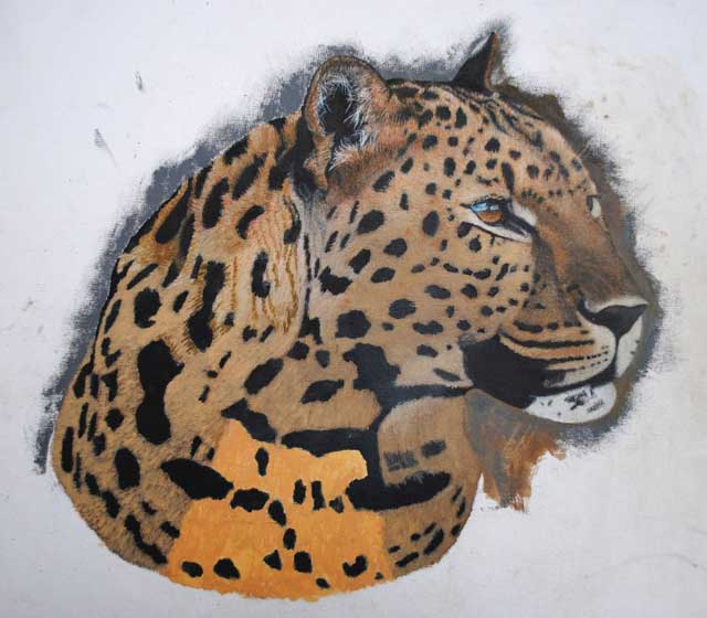 Leopard-portrait-Stage-one-Wildmoz.com