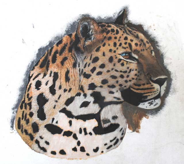 Leopard-Portrait-Stage-Two