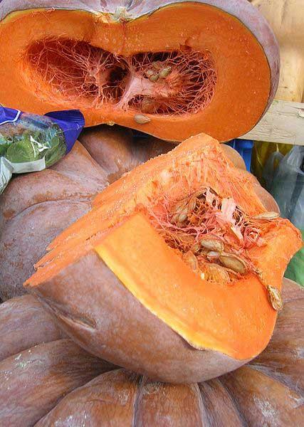 Pumpkin-for-Pumpkin-fritters-Wildmoz.com