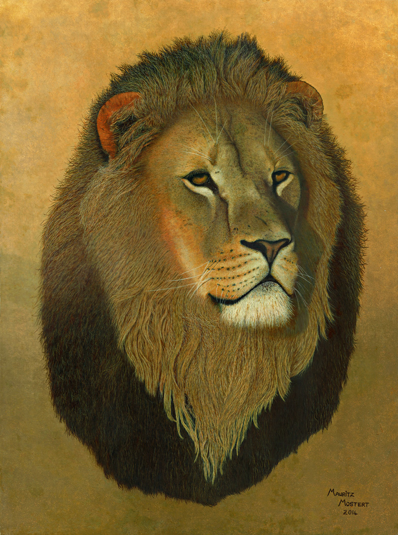 African-Lion-Art-in-Oils-Wildmoz.com