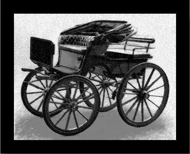 Spider-Horse-Drawn-Buggy-Wildmoz.com