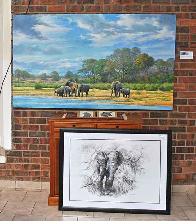 Elephants-Main-Gallery-Wildmoz.com