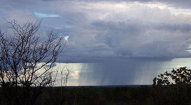 Africa-Savannah-Storm-Wildmoz.com