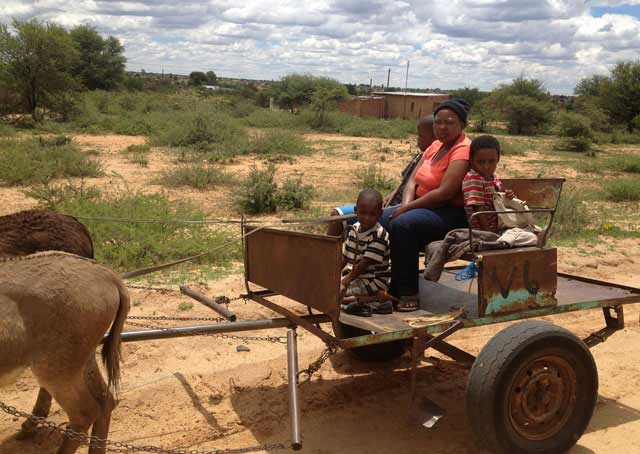 Donkey-Cart-on-the-Road-Wildmoz.com