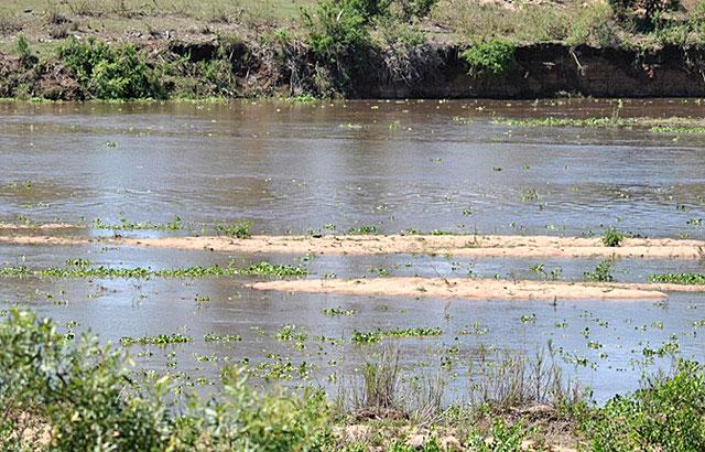River-running-where-hippo-and-rhino-grazed-drinking-water-Wildmoz.com