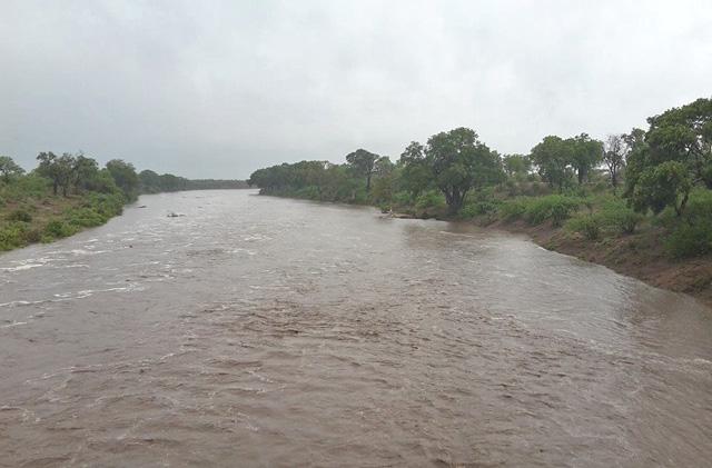 Shingwedsi-River-running-in-the-rain-drinking-water-Wildmoz.com