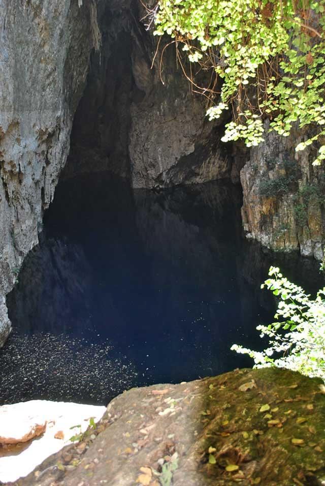 View-Into-Sleeping-Pool-Wildmoz.com
