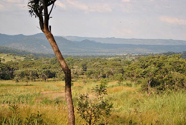 Wild-Explorations-African-Valley-Wildmoz.com