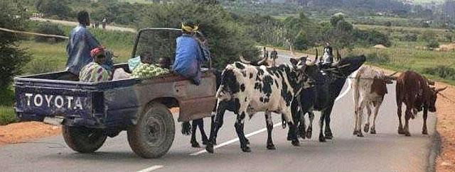 African-Toyota-Wildmoz.com