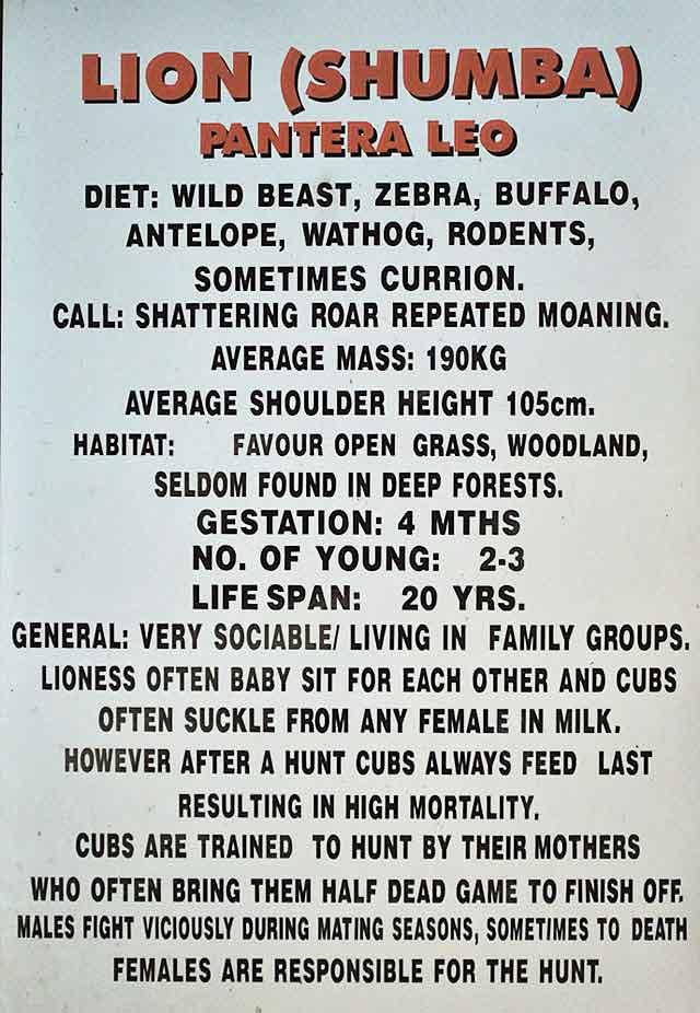Lion-Cheetah-Park-Sign-Harare-Wildmoz.com