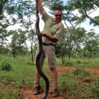 African Python Terror