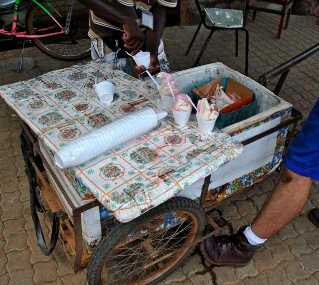 ice-cream-vendor-serve-wildmoz.com