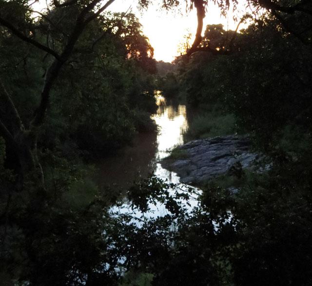 dark-african-river-wildmoz.com