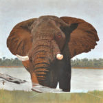 An Elephant Painting