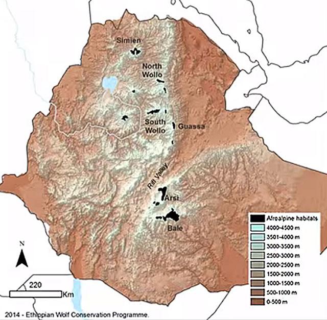 Ethiopian-Wolf-Conservation-Program-Map-wildmoz.com