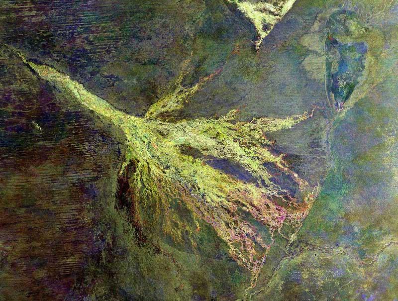Okavango-satellite-image-Wildmoz.com