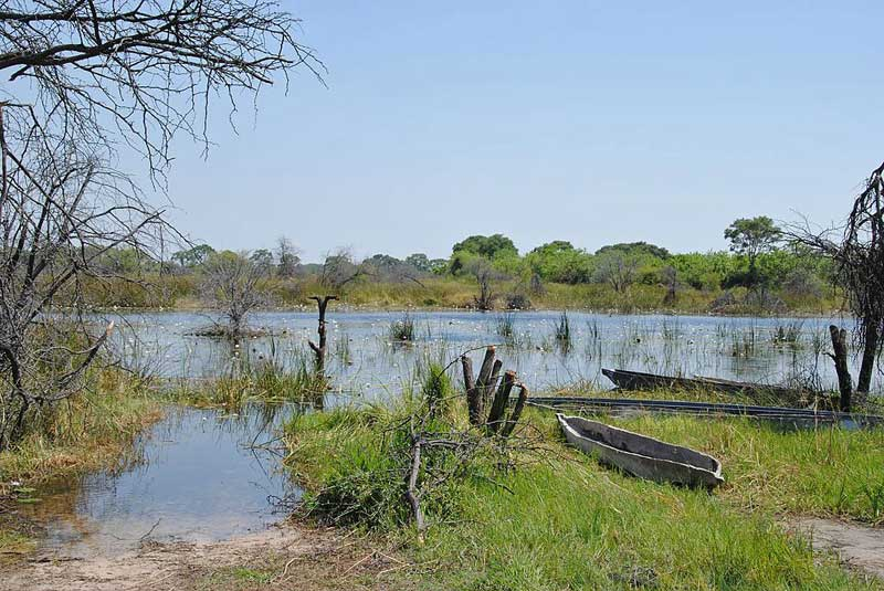 Okavango-three-makoro-Wildmoz.com