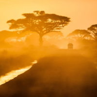 10 Evergreen African Proverbs