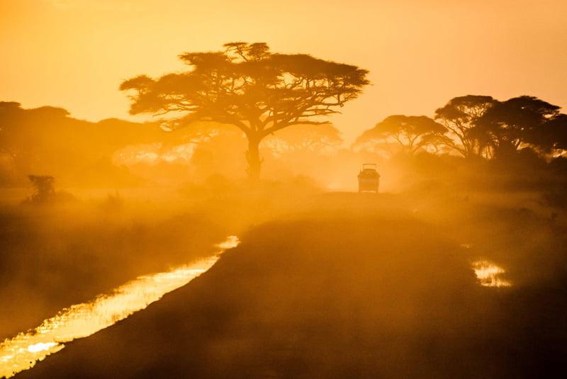 African-dusk-Wildmoz.com