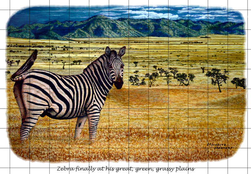 Zebra-Plains-Web-Grid-Wildmoz.com