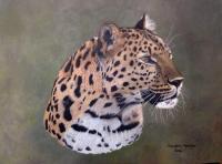 Leopard Portrait - Art in Oils